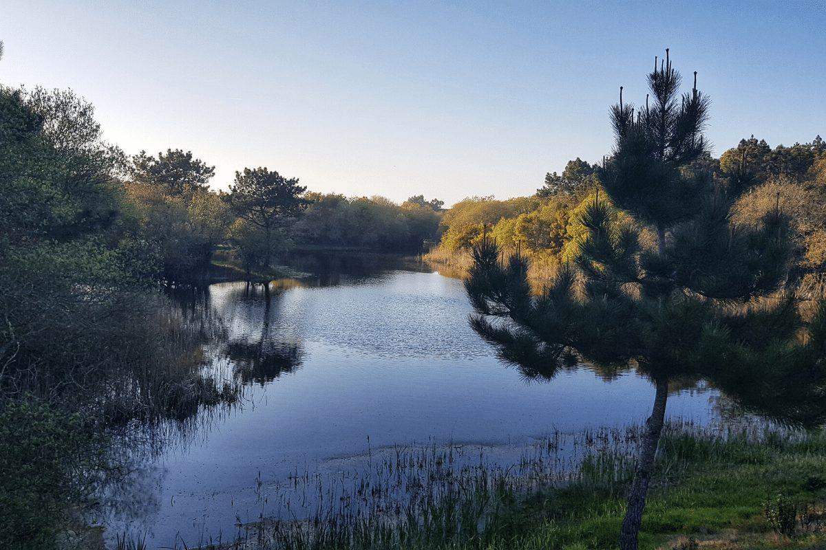 """Mirjam uit Portugal: """"Het geluid van de natuur in nemen we nooit meer voor lief."""""""