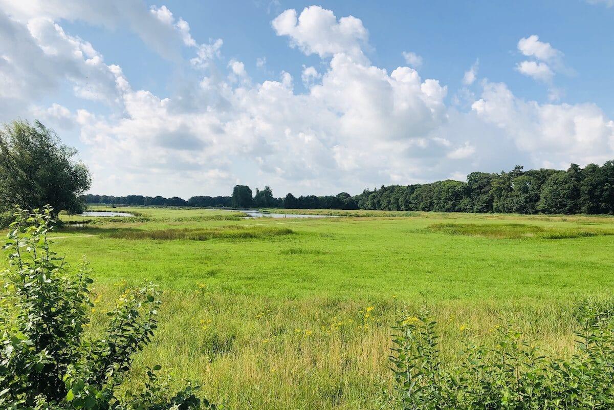Terug in Nederland